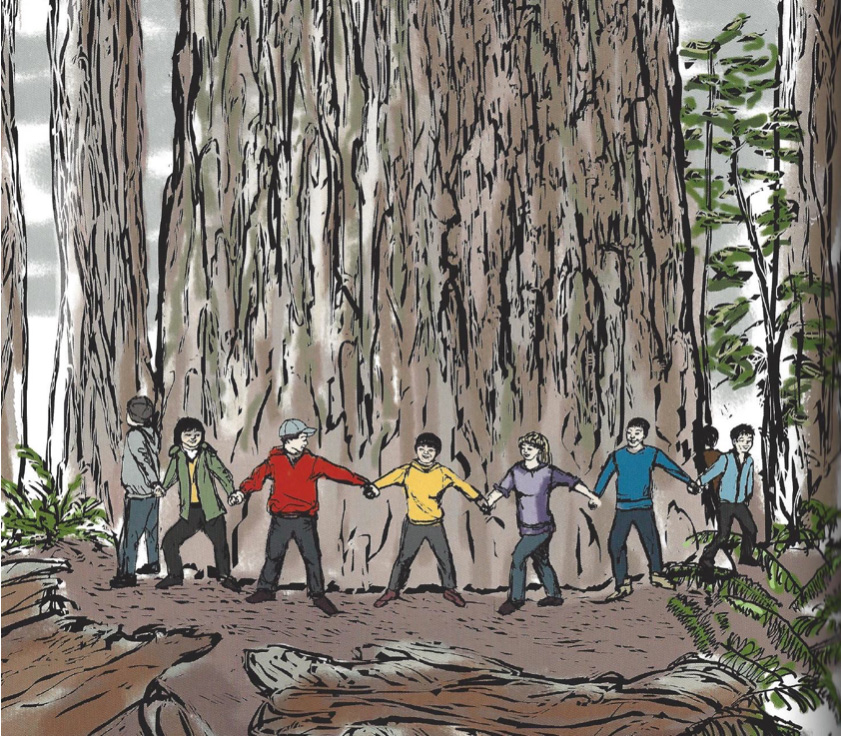 Takata High School students try to get their arms around a giant Sequoia