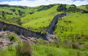 new-zealand-earthquake-fault-rupture-waiau