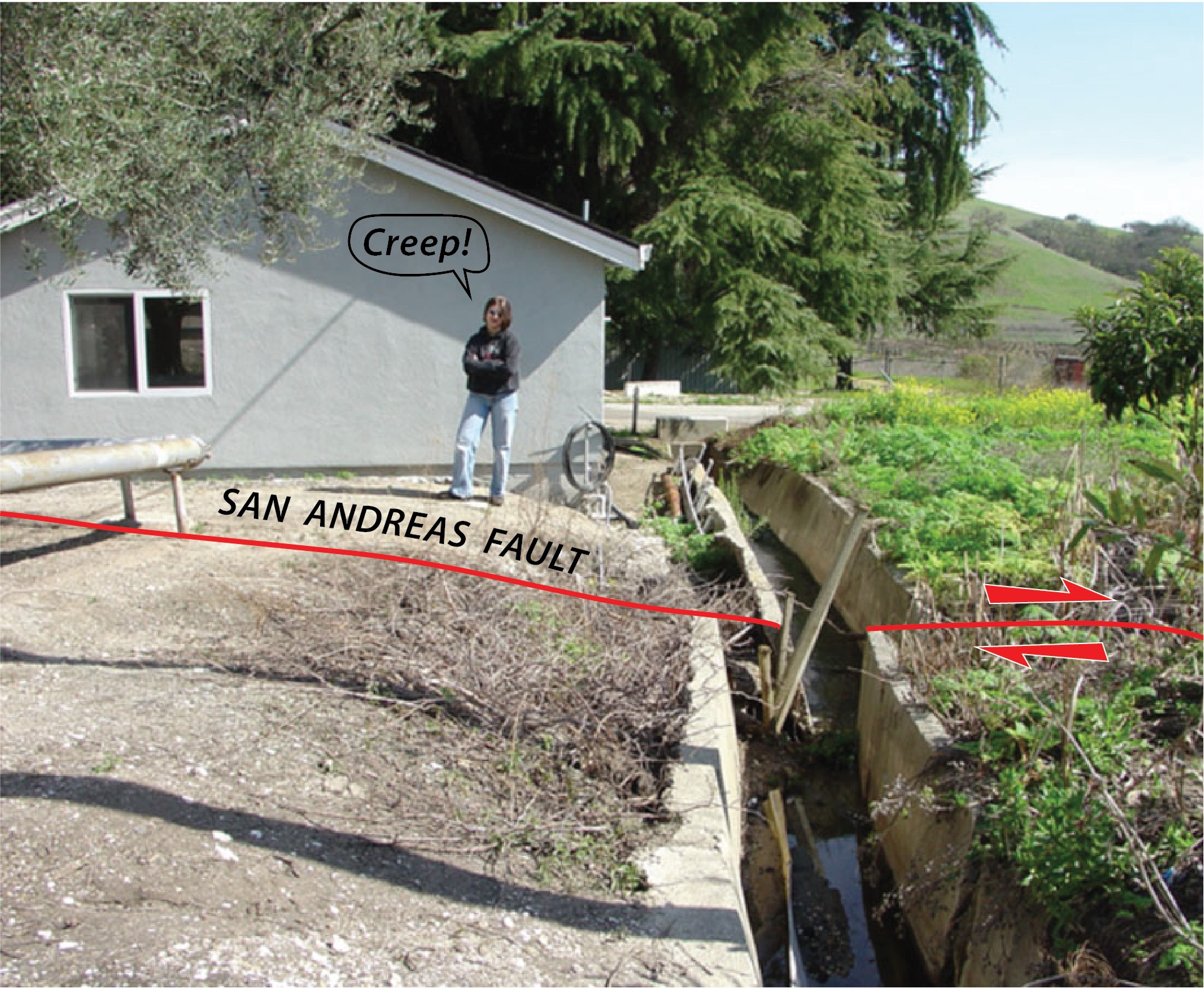 The San Andreas Fault cuts through DeRose Winery in Hollister, CA. The resulting creep (steady slip) has progressively offset this culvert over the past 30 years. (Photo from geologycafe.com)