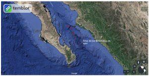 Pie de imagen: Esta imagen de Google Earth presenta la batimetría de las partes central y sur del Golfo de California, así como también el área de los terremotos de ayer y las flechas muestran los márgenes divergentes y de fallas de deslizamiento. Lo que es claro a partir de esta imagen es cómo la parte sur del Golfo está mucho más definida que la porción central. Esto se debe a una ruptura más rápida en el sur.