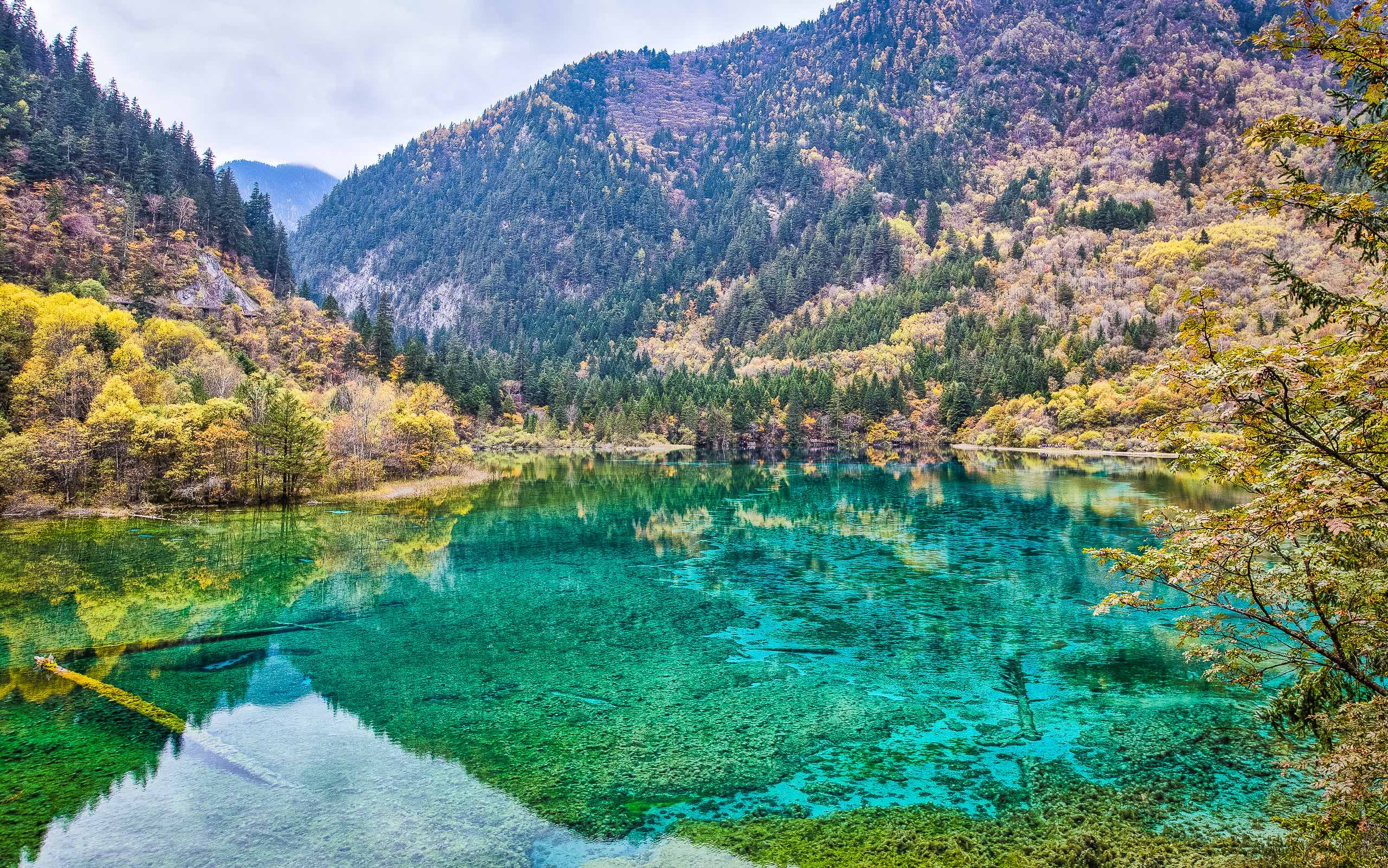 Jiuzhai-National-Park-earthquake