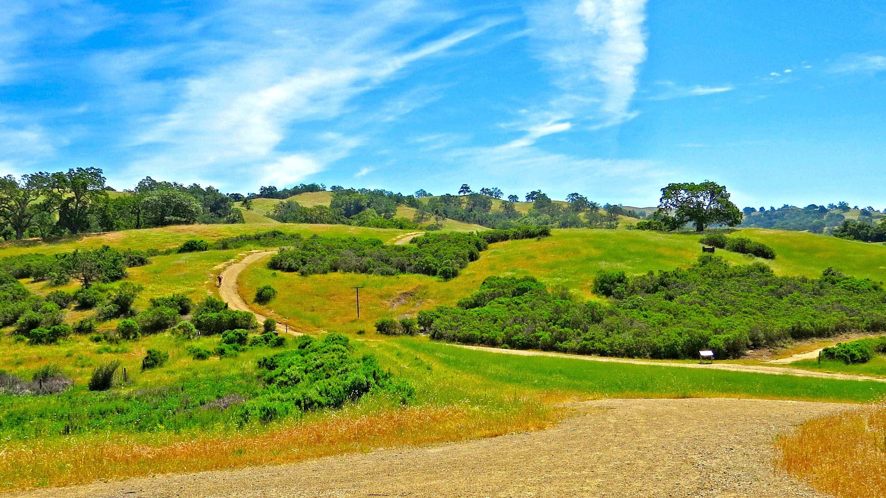 Yesterday's M=4.1 earthquake east of San Jose struck along the Calaveras Fault within Joseph D. Grant Country Park. Historically, the Calaveras Fault has ruptured in large magnitude earthquakes, including a M=6.2 in 1984. (Photo from: Accessible Nature)