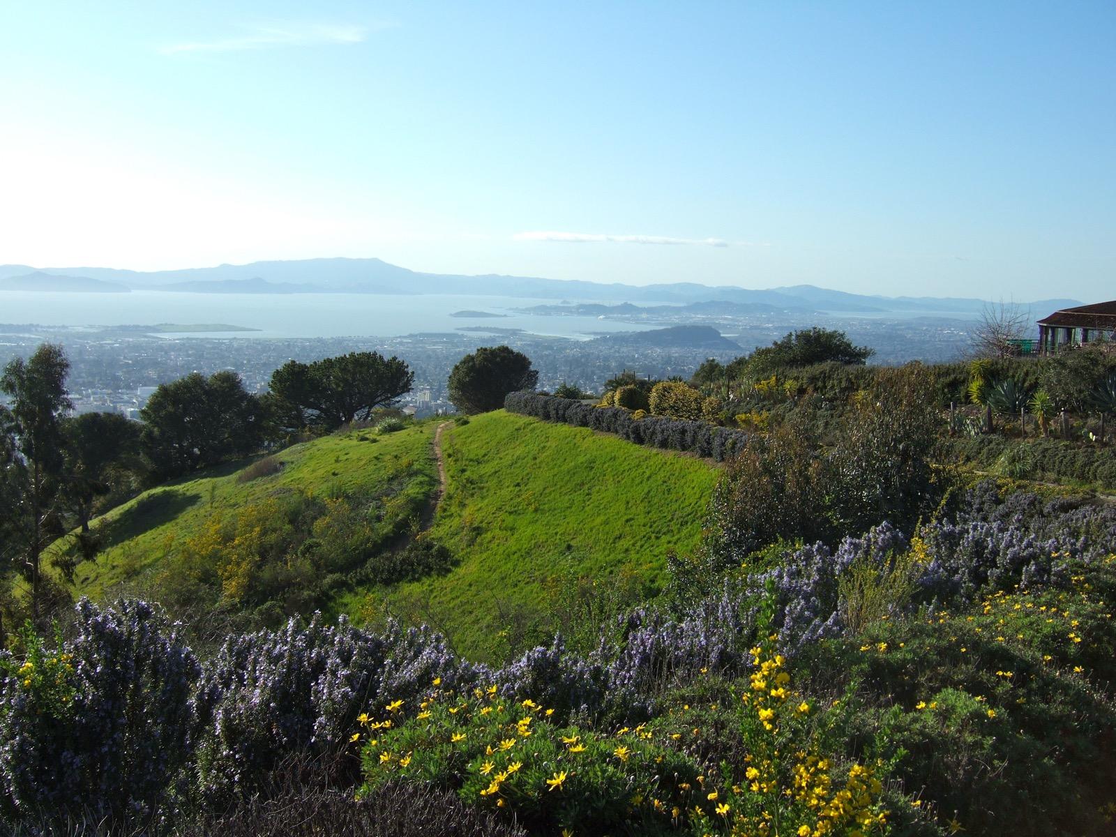 berkeley-hills