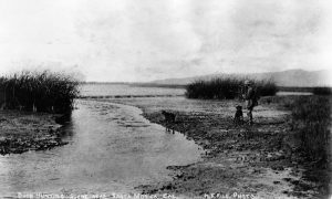 In 1890, Marina del Rey was just a swamp inhabited by animals and lonely hunters looking for a meal.