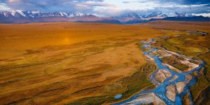 800,000 acres within the Arctic National Wildlife Refuge are at risk of being exposed to oil and gas drilling. (Photo by: Florian Schulz)