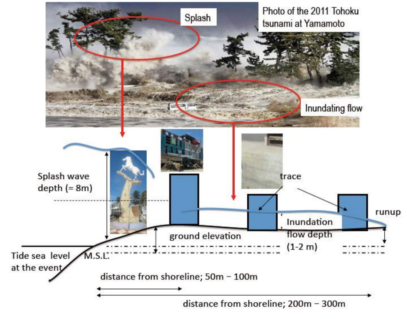 Figure 2 Cross section of the tsunami and topography at the Palu with splash wave/inundation flow depth (Muhari et al, 2018 JDR submitted)