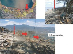 Photo 2 damaged coastal area where the subsidence in large area and backward trees to the sea are observed.