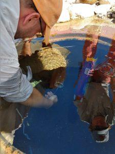 Installation of temperature logging sensors at the Coamo hot springs site. Credit: Tania Figueroa Colon