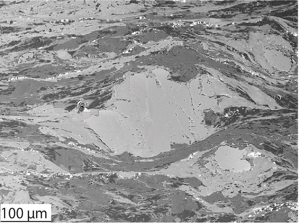 This SEM image shows hydrated oceanic crust that was deformed at about 370 degrees Celsius with 6 kilobars of pressure in a plate interface shear zone. Credit: Tulley et al., Science Advances (2020).