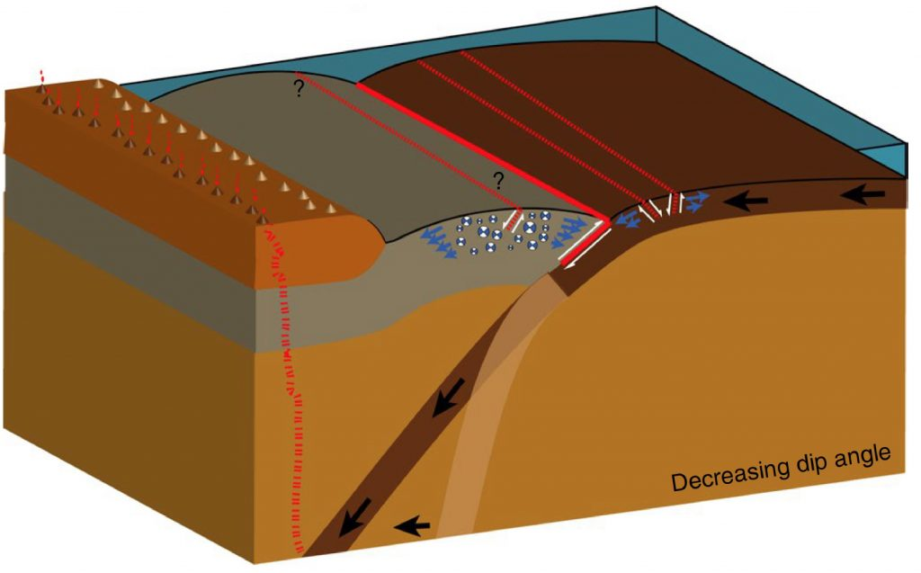 Effects of decreasing subducting plate angle (tan vs. brown) on the overriding tectonic plate (gray). Blue and white balls represent extensional aftershocks in the upper plate after a megathrust rupture event along the solid red line (megathrust). Red dotted lines are inferred normal faults. Blue arrows depict orientation of extensional stress. When subduction angle is decreased, the volcanic arc moves away from the trench. Credit: Oryan and Buck, 2020; Nature Geosciences