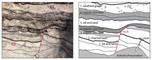 This figure shows a fault that cuts through four different layers and was later buried by younger soil layers. Credit: USGS.