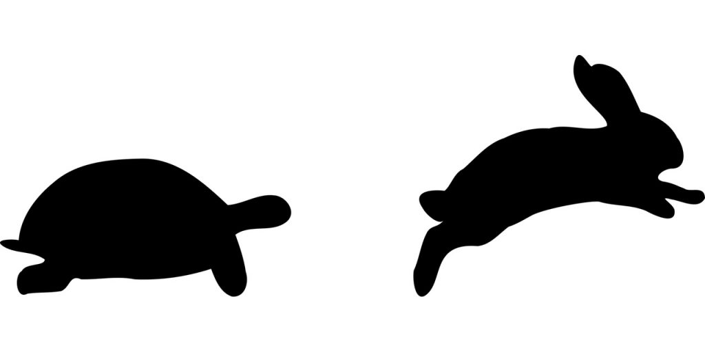 Silhouette of a tortoise and a hare