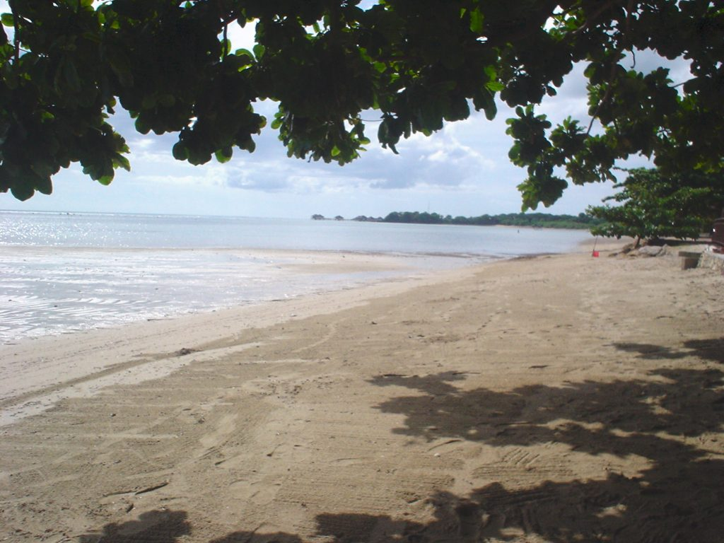 Beach of Calatagan, Batangas, Philippines, near where an earthquake struck on July 24, 2021. Credit: What's on My Mind, via Flickr, CC BY 2.0