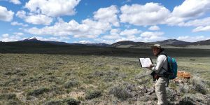 The author doing field mapping in southwestern Montana in June 2019. Courtesy of Jeng Hann Chong.